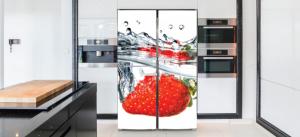 חיפוי מגנט למקררים (33)