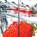 חיפוי מגנט למקררים (66)