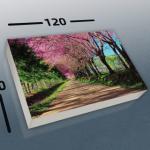 הדפסה דיגיטלית קנבס (23)