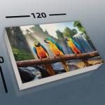 הדפסה דיגיטלית קנבס (5)